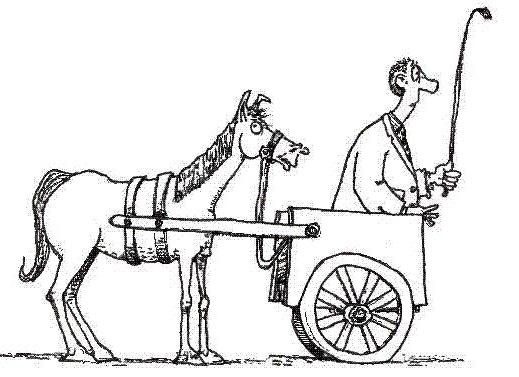 horse_2dcart